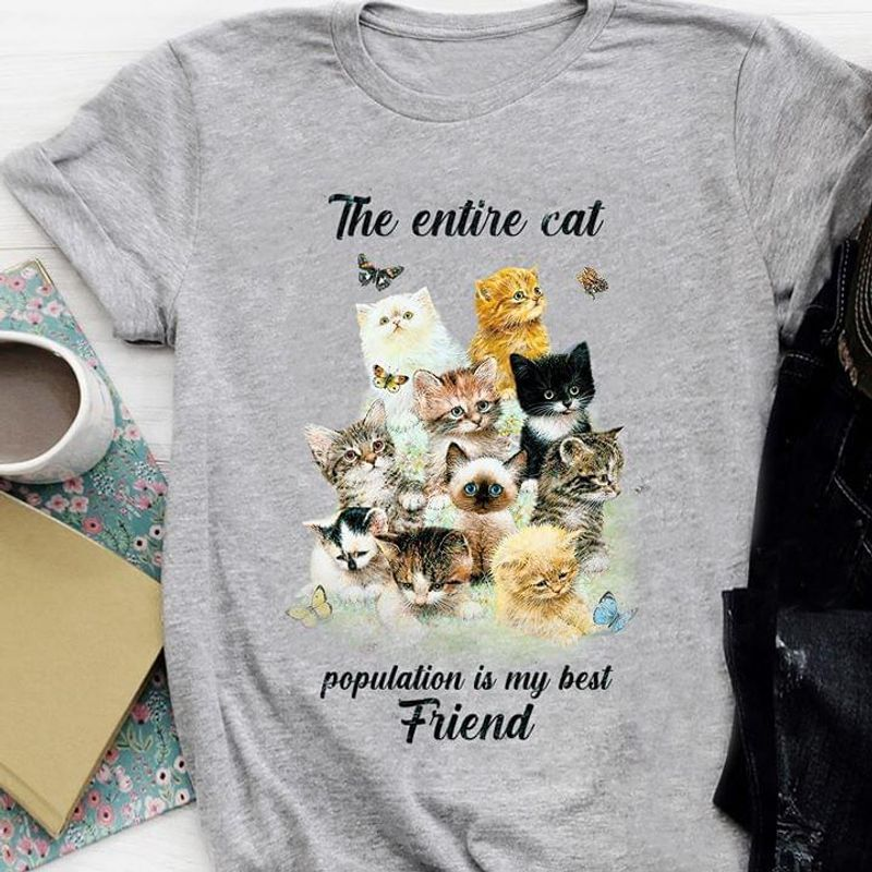 Cat Lover The Entire Cat Population Is My Best Friend Grey T Shirt Men And Women S-6XL Cotton