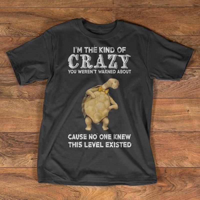 Im The Kind Of Crazy You Werent Wasnt About Cause No One Knew This Level Existed Turtle Tshirt Gray A2