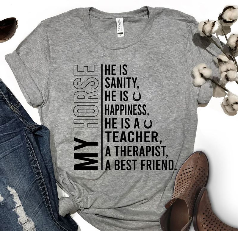 My Horse He Is Sanity He Is Happiness He Is A Teacher A Therapist A Best Friend T Shirt Grey B1